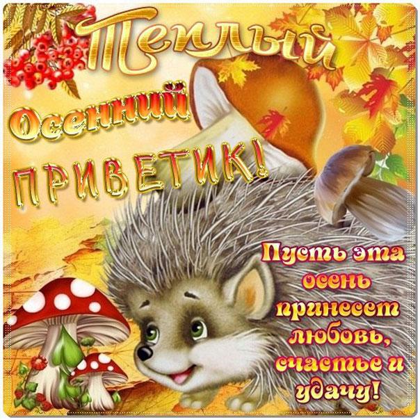 Прикольные открытки про осень для друзей, рамки