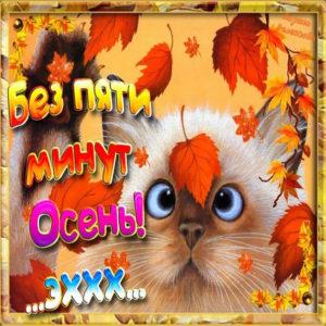 Позитивная веселая открытка уже осень
