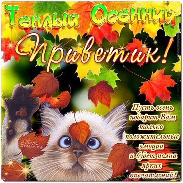 Открытки поздравление с осенью
