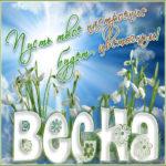 Позитивные и теплые открытки весна