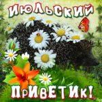 Чудесные открытки июльский приветик