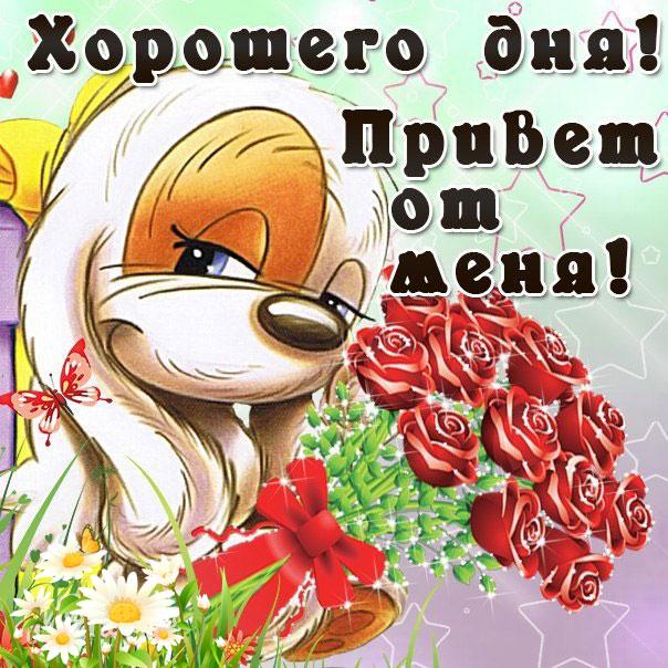 Прикольные открытки добрый день и хорошего настроения, открытке бабушке