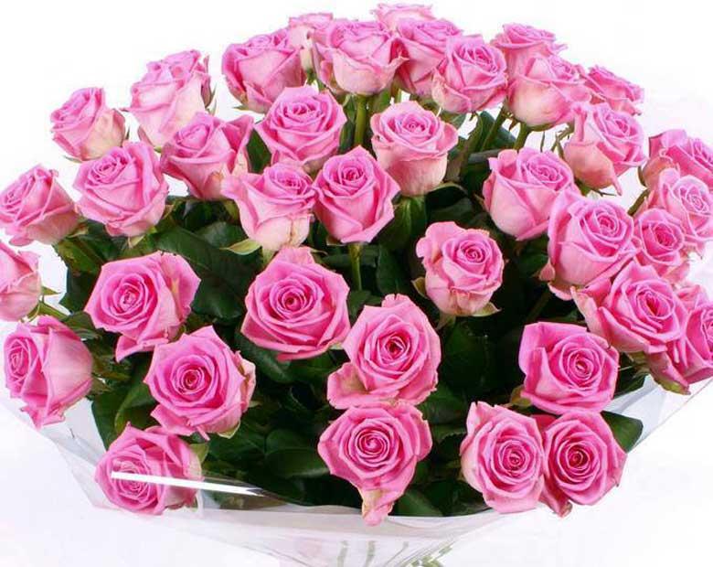 розы с днем рождения