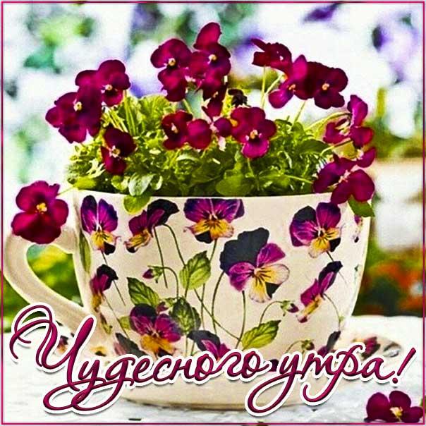 Картинка чудесного утра. Красивая надпись утро, яркого утречка, цветы, стих утро, текст с утром, мерцание, с пробуждением, узоры, слова, бабочки, цветная, открытки.