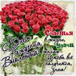 Виолетта с Днем рождения поздравительная открытка. Розы, красивый букет, слова, стих, поздравляю, эффекты, мигающая, с поздравлением, узоры.