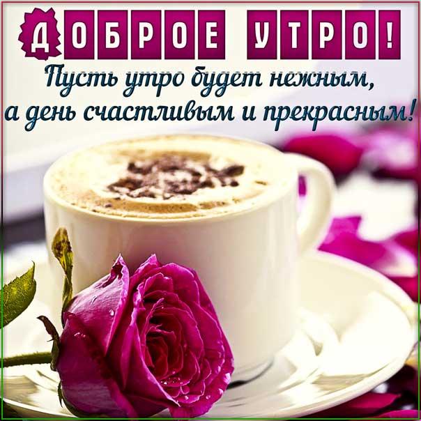 Картинка нежного утра. Прекрасного дня надпись, с бликами позитивного утра, роза, утренний позитив, стихотворение, стих, с бликами, мерцающие, фразы, узоры.