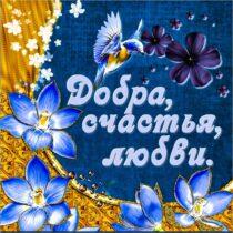 Друзьям пожелание, доброты и счастья, добра счастья любви, для друзей картинка, красивое пожелание, картинка с текстом