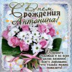 Антонине лучшие открытки именины