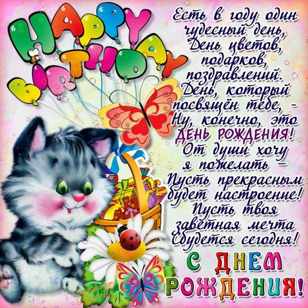 Открытка на день рождения котенок  с цветами