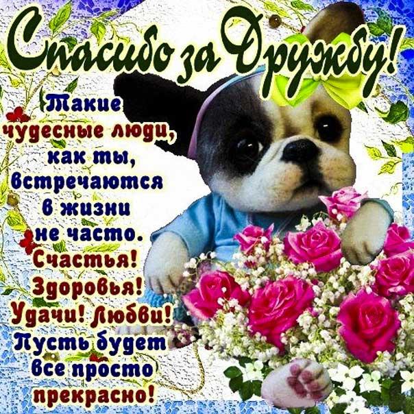 Спасибо за дружбу милая картинка. Друзьям, щенок, надпись, цветы, для друзей.