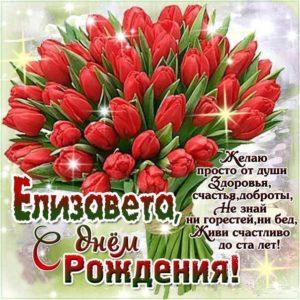 C днем рождения Елизавета тюльпаны красивая открытка