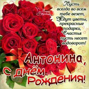 С днем рождения Антонина картинка. Красные розы, букет, поздравительная надпись, стих, слова