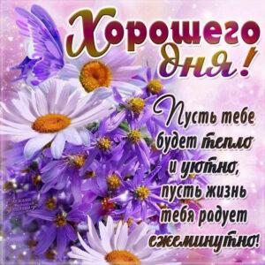 Добрый день картинка с цветами и надписью